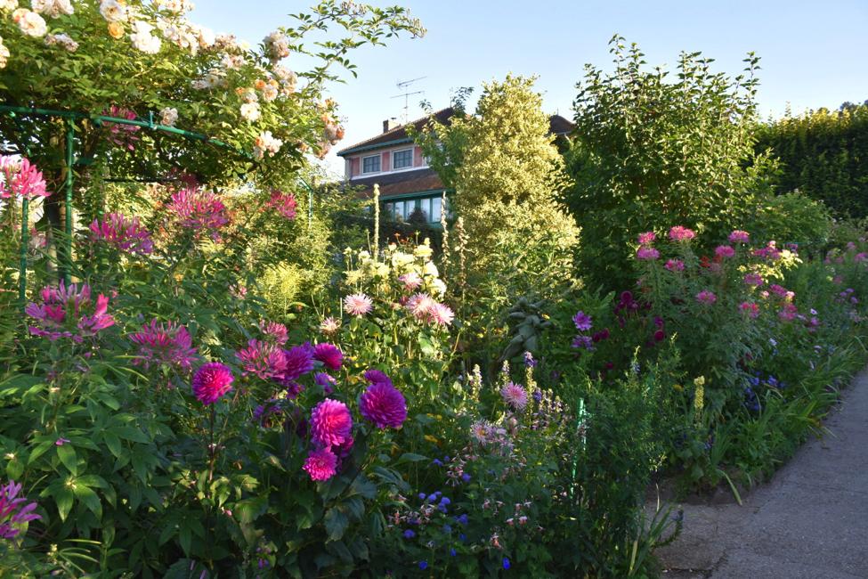 garden-september.png