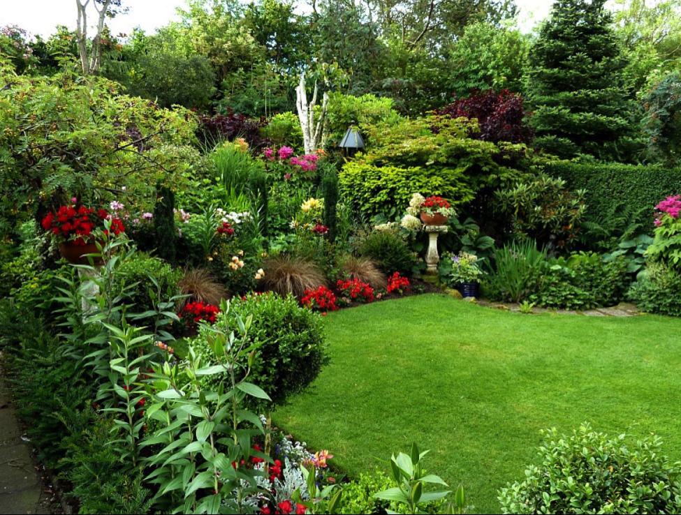 garden-august.png
