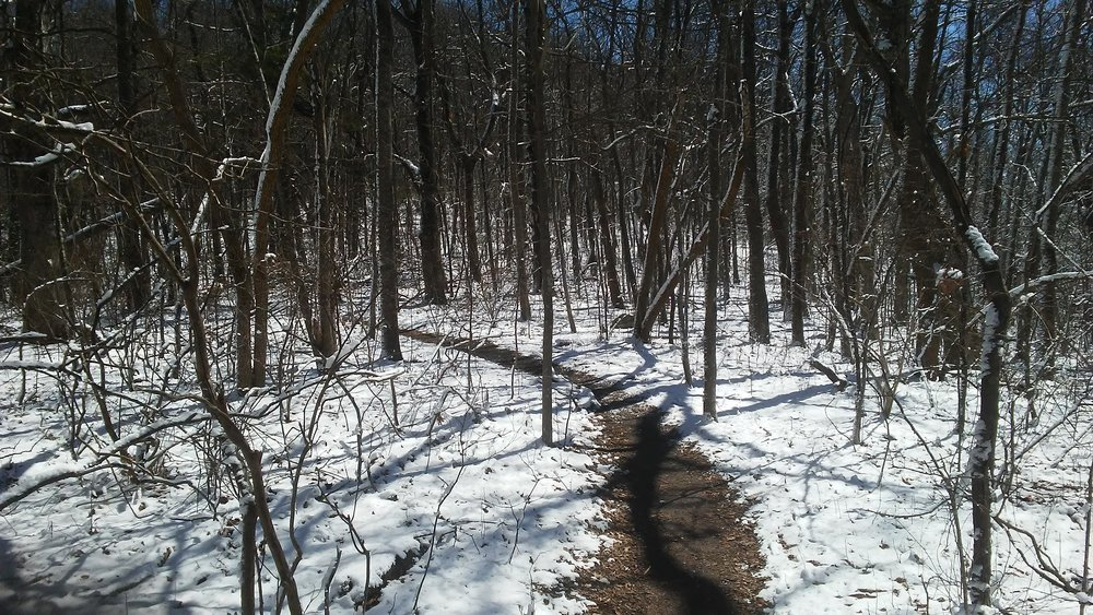 Snow-covered Approach Trail on March 15.