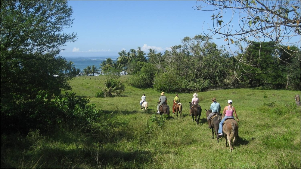 Best Guided Horse Tour in Costa Rica