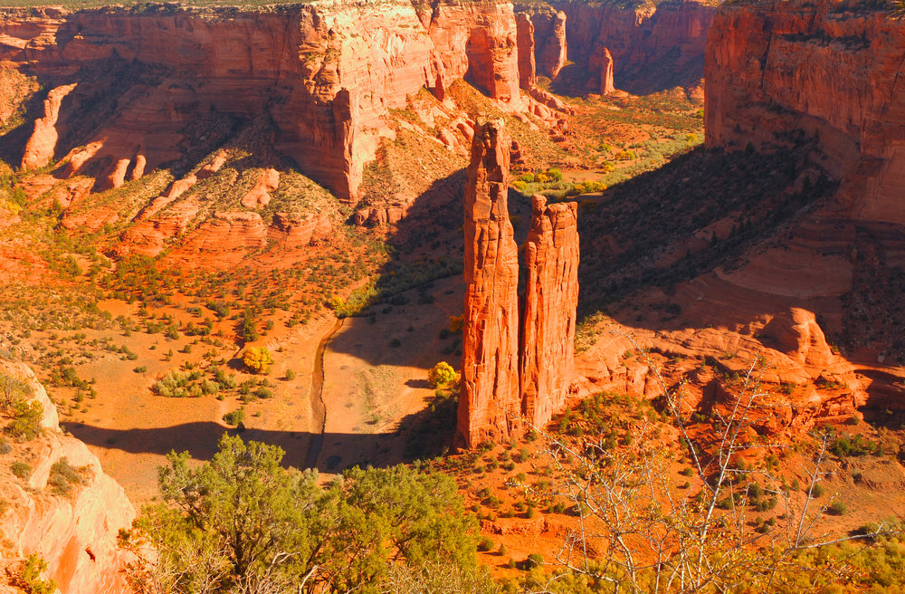 Eagle meets Condor: Ancient Lands Excursion WITH JORGE LUIS DELGADO IN ARIZONA'S GREAT SOUTHWEST