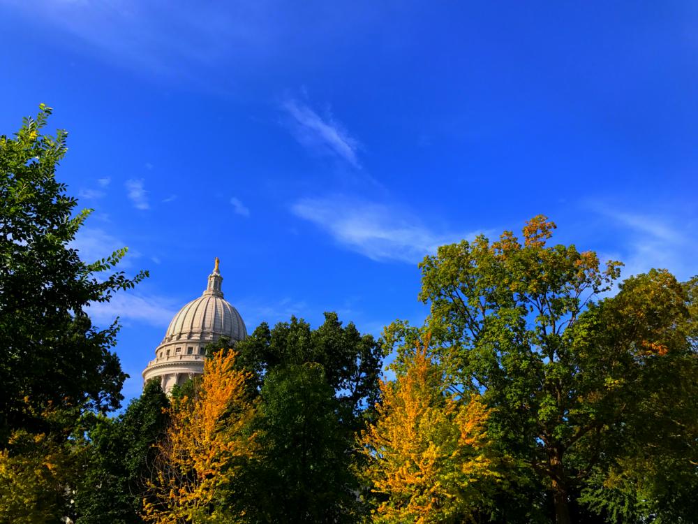 Wisconsin's Wetlands Are Under Attack -