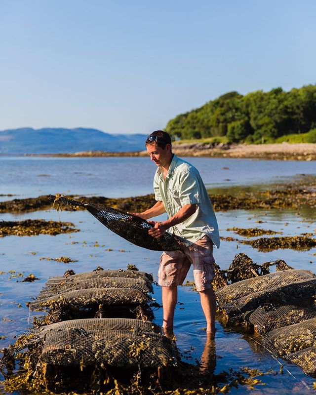 Oyster farmer, shot for @olivemagazine @inverrestaurant @rhiannon_batten #oysterfarmer #scotland