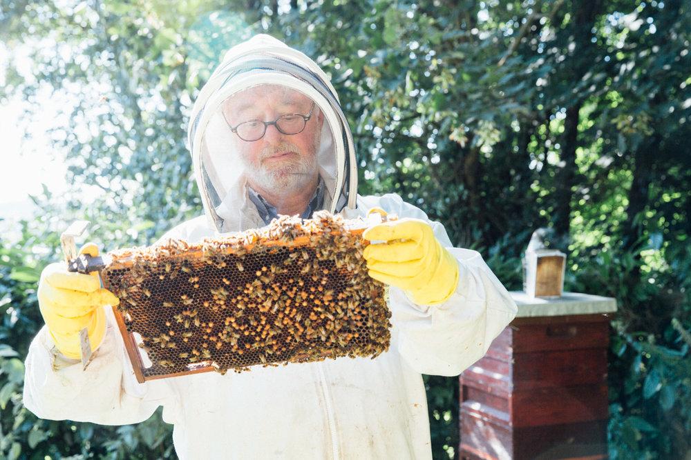 THE BEEKEEPER - Olive Magazine