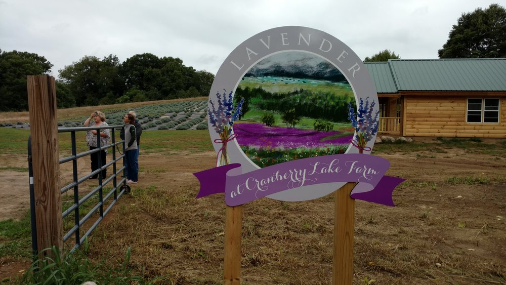 Cranberry Lake Lavender had a gorgeous sign! Would love to incorporate this idea on my property!