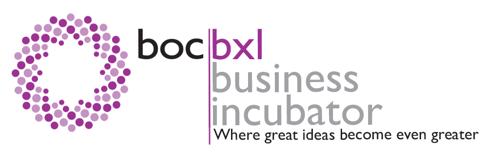 bxl-business-incubator-bronx-nyc-dedicated-desk