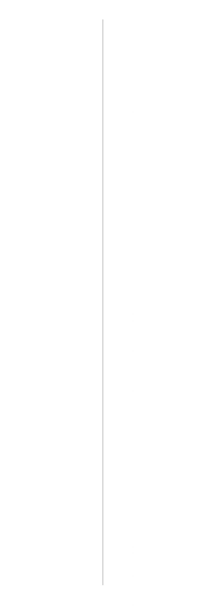 line spacer.jpg