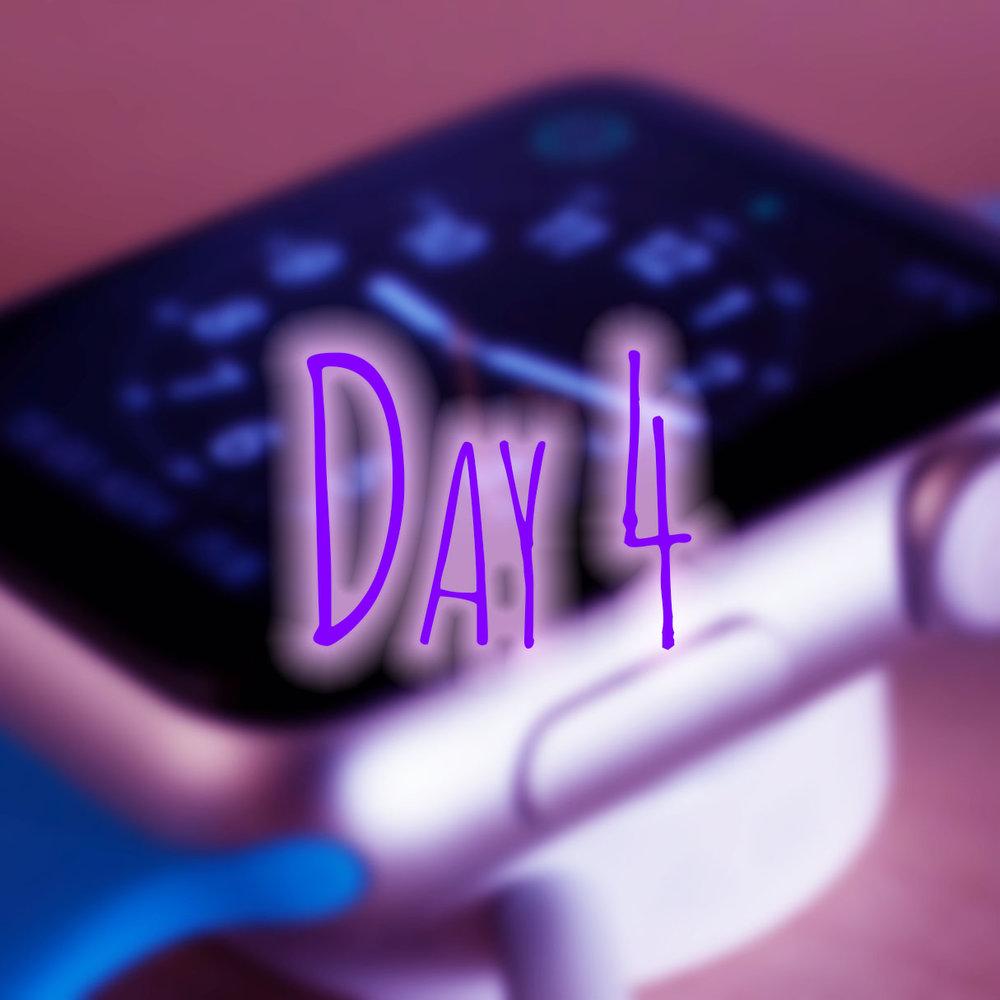 day4b.jpg