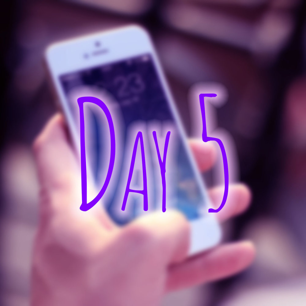 day5b.jpg