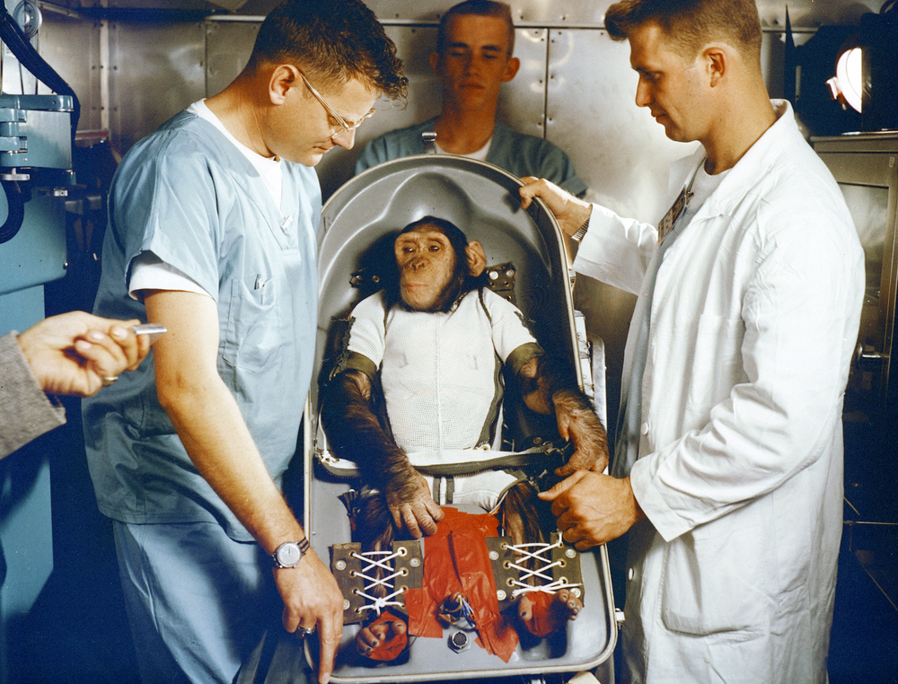 Ham the chimpanzee made his Mercury flight in a special seat