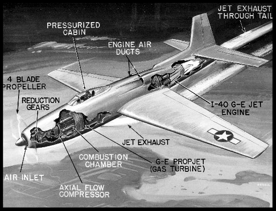 Above- Consolidated XP-81 cutaway drawing.