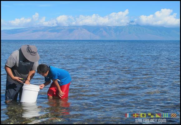 Maunalei Ahupua'a Lawai'a Camp