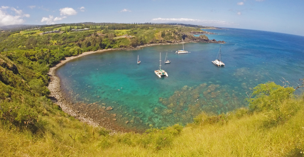 Honolua Bay Maui