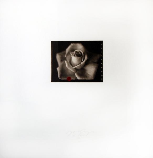El Circo, Photogravure & platinum, 6 x 7.25 in..jpg