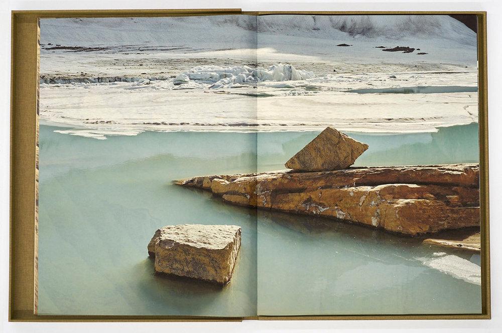 detail (van Coller), The Last Glacier