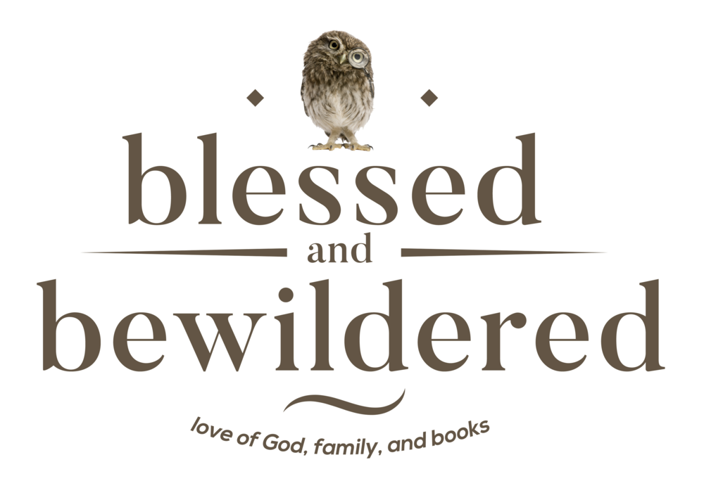 A Treasure Concealed By Tracie Peterson Blessed And Bewildered