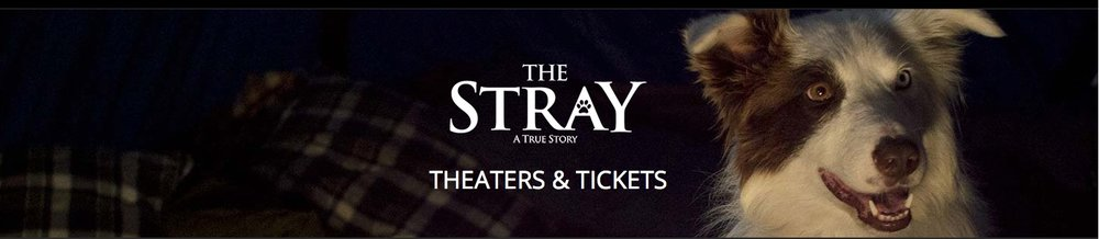 The Stray is still playing in selected theaters now.  Go  HERE  or click on the image above to find locations where it is being shown.