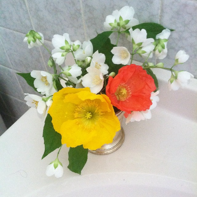 This posey contains mock orange and poppies from Mary Simmons' garden.