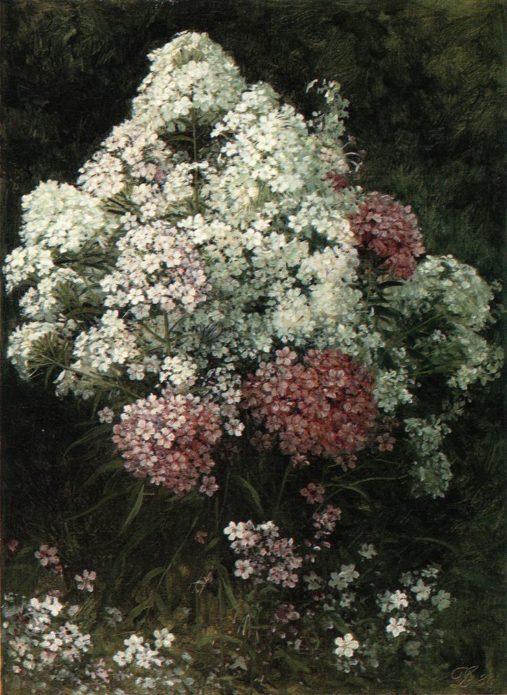 David Johnson, Phlox, 1886