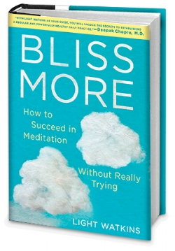 bliss-more-graphic.jpg