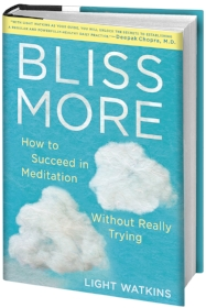 bliss more graphic - high res (1).jpg