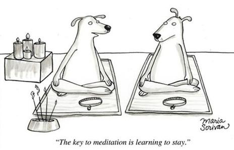 keyto-meditationstay1.jpg