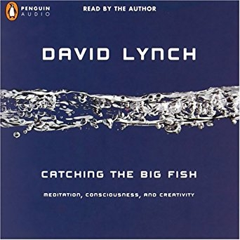 Catching the Big Fish by David Lynch  - In this collection of essays and articles, Lynch delves deeply into the creative process and how it relates to consciousness.