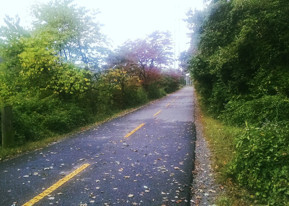 Early stages of fall on the W&OD trail