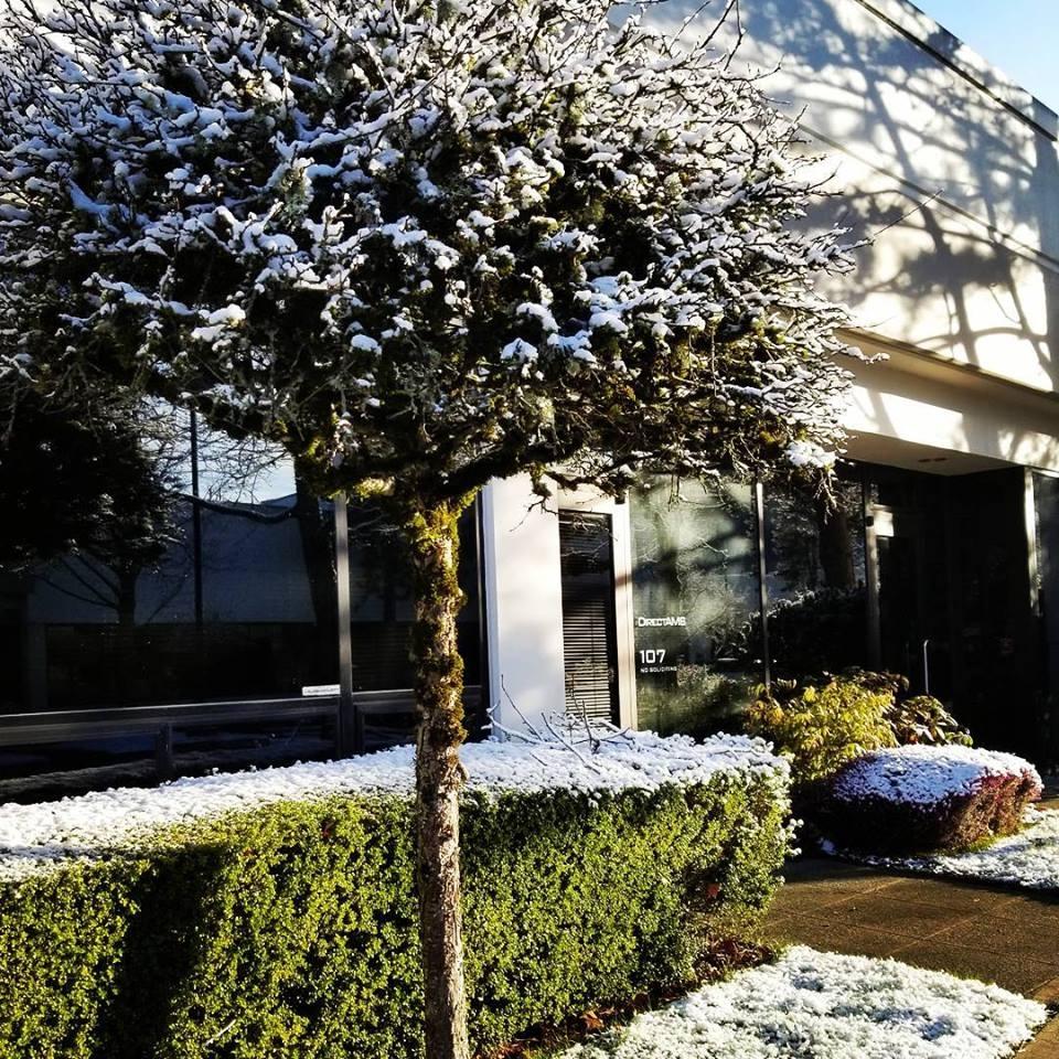 DirectAMS Snow