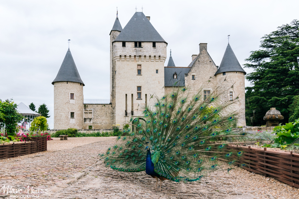 Peacock Castle