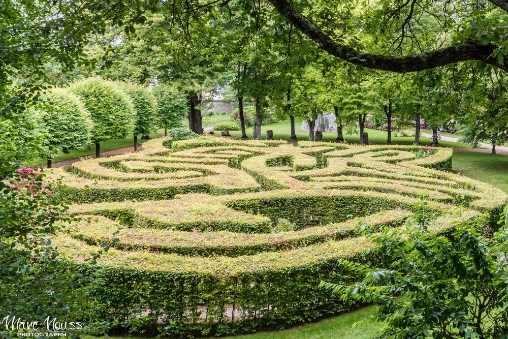 Alice Labyrinth