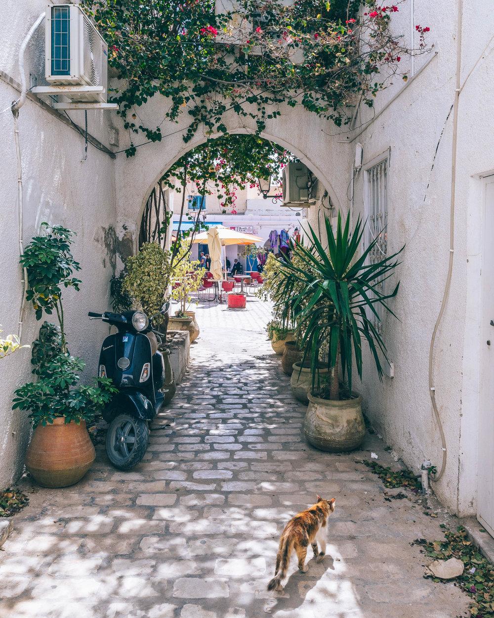 Radisson Blu Djerba - Marc Nouss Photography-57.jpg