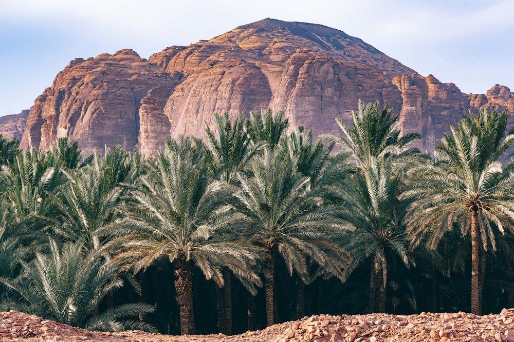 Saudi Arabia Kawa News - Marc Nouss Photography-15-2.jpg