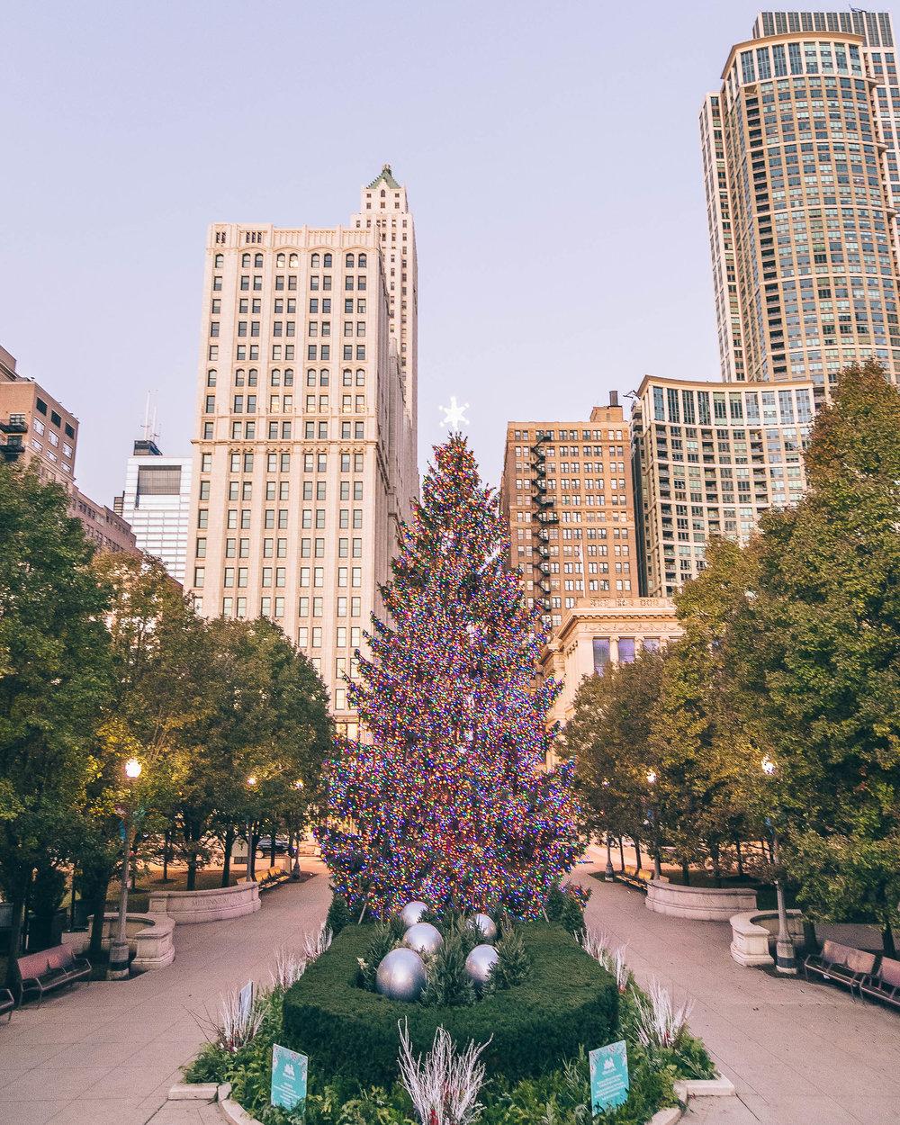 Chicago-MarcNoussPhotography-62.jpg