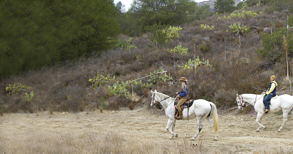 "<a href=""#sign-up"" style=""color:white"">OCTA Wilderness Preserve Hikes and Equestrian Rides</a>"