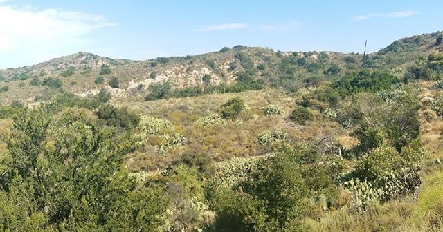 Step away from the hustle and bustle of the city by taking a moment to enjoy nature. 🍃 Take in marvelous of the City of Rancho Santa Margarita during a hike at Wren's View Preserve. Register today: https://bit.ly/2M8q6yj