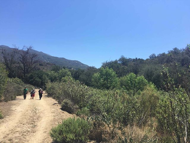 Lace up your hiking boots and join us on Saturday, August 18, as we explore Wren's View Preserve in Trabuco Canyon. Sign-up today at the link in our bio. 🌿