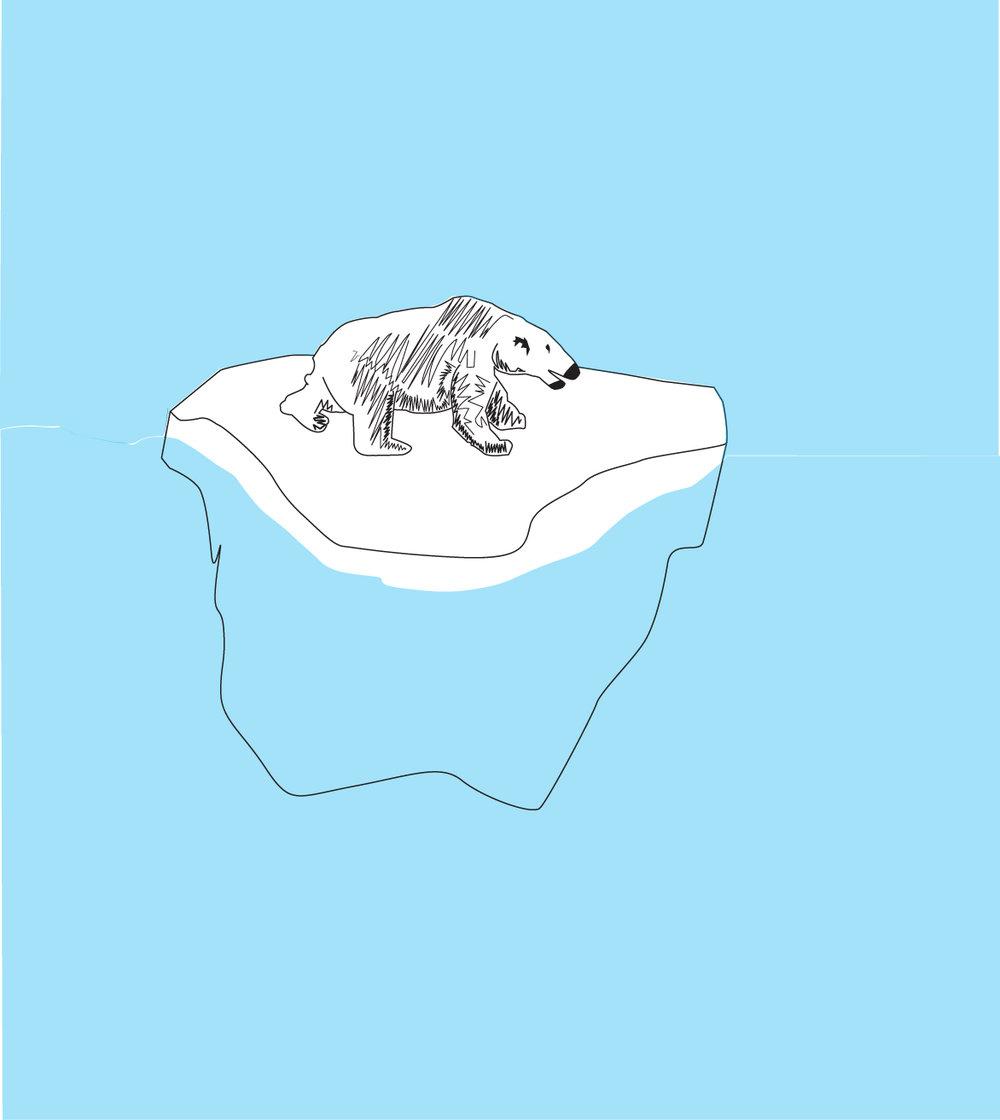 Polar_Bear_Icecap.jpg
