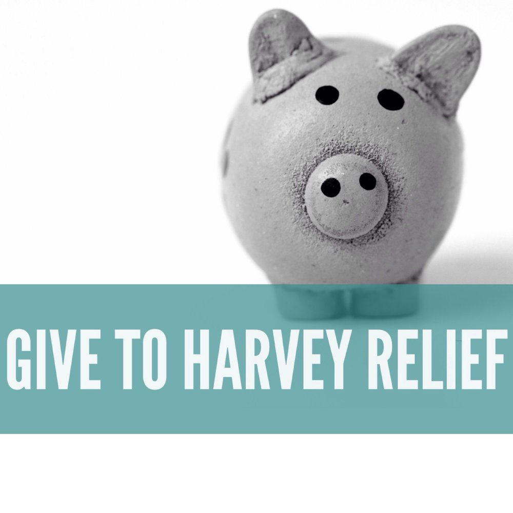 Give to Harvey