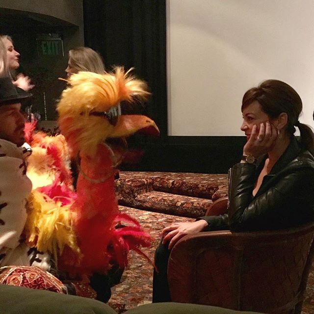 The psychic reading from a bird puppet last night revealed my future is bright. 👀😎