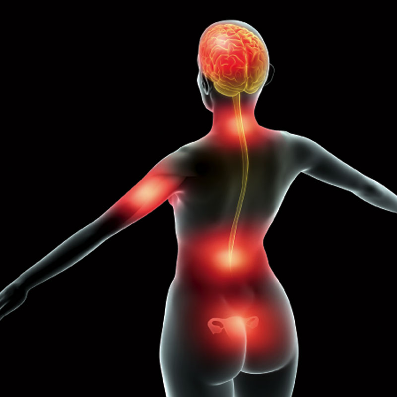SUFFERING FROM LONG TERM PAIN? UNDERSTANDING IT IS THE KEY
