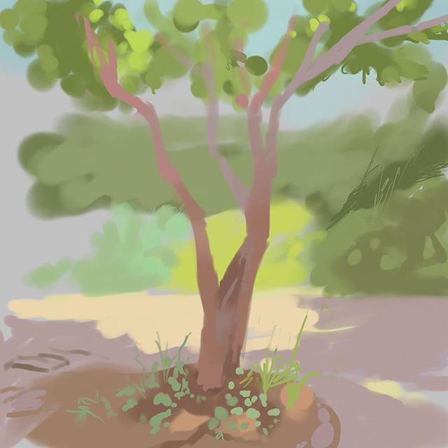 Quick sketch from last weekend #tree #art #nature #procreate #pleinair