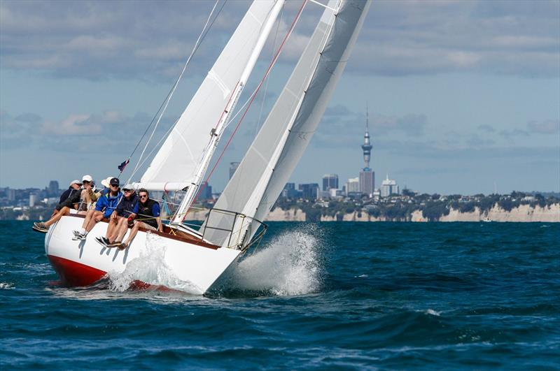 Rainbow II in action on Auckland Harbour