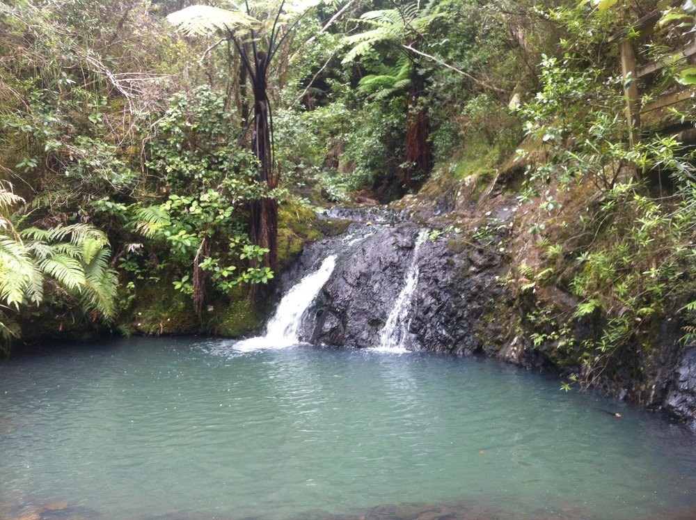 Great Barrier Island 2012 -