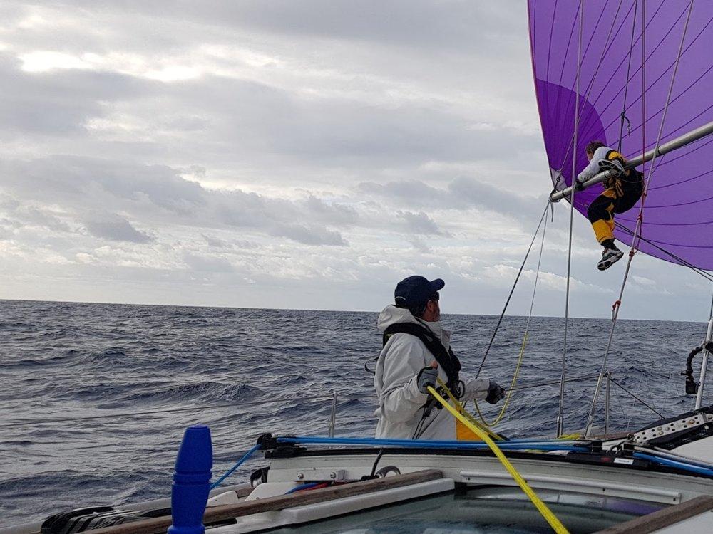 Sailing regatta charter QLD Australia