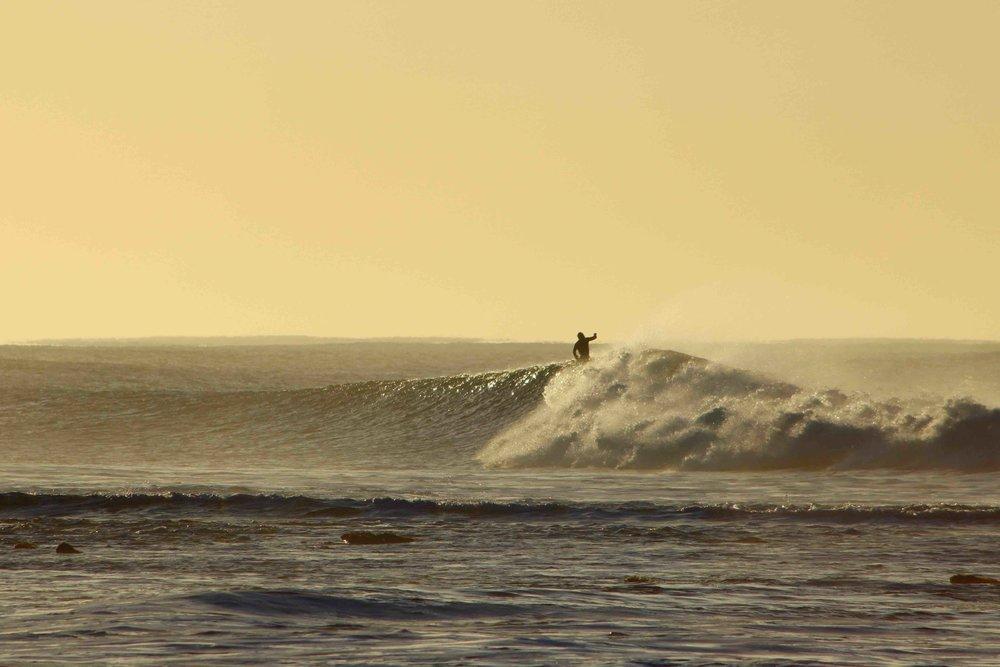 Nick Moloney Surfer