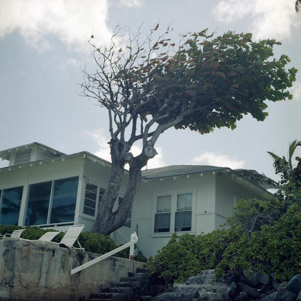 Hawaii on Film, 2013
