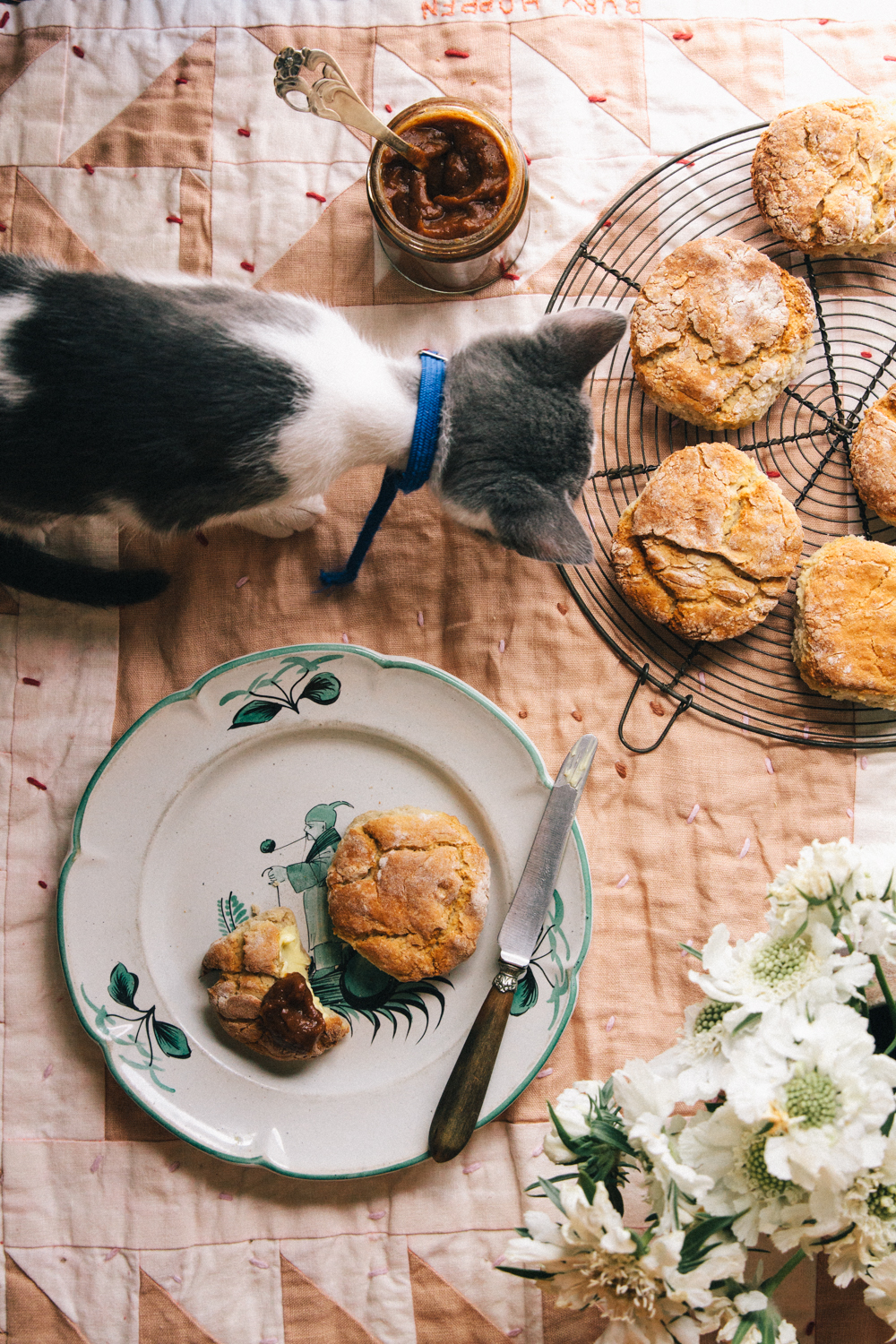 Photography & Styling - Jacinta Moore  Recipe - Amber Rossouw   For  L  unch Lady Magazine    //