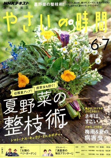 やさいの時間 6・7月号 - 巻頭ページに野菜で作る瓶詰めを紹介しています。