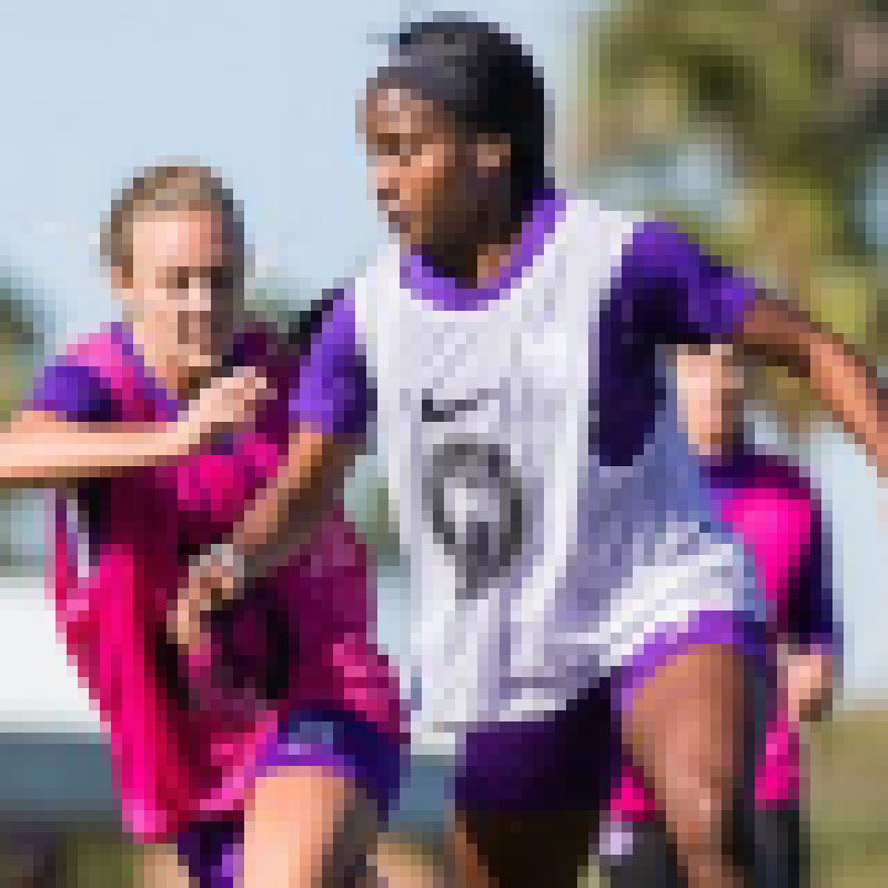 VAVEL: - The Orlando Pride will begin their regular season on Saturday, March 24th at home against the Utah Royals. With arguably the strongest roster in the league returning this season the Pride hopes to capitalize on their talent and earn a berth in the Championship game in 2018.[ READ THE FULL ARTICLE HERE ]